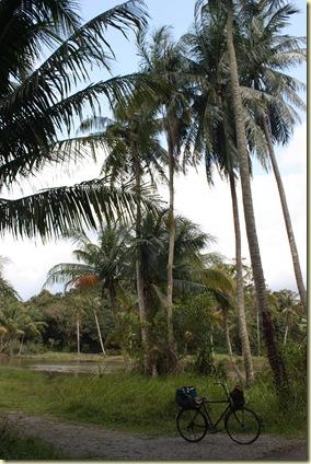 Singapour2009_216