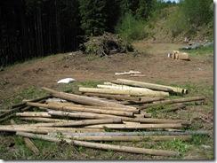 05-16-08 - 05-17-08 Pasture Renovation - lower back acreage 006