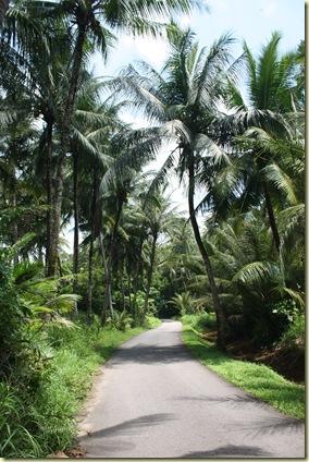Singapour2009_185