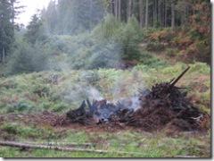 09-16-07 stump piles burn down 023