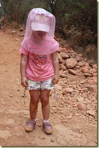 Australie2008_ 751_Red Center_Kata Tjuta