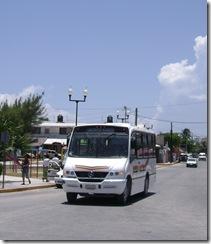 Minibus Colectivo a Puerto Morelos