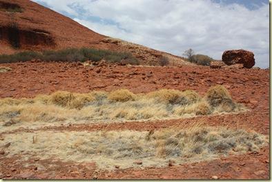 Australie2008_ 755_Red Center_Kata Tjuta